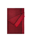 Cashmere-Silk Chinese Door Scarf